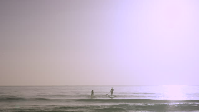 pacific islander man and woman paddling sups in ocean - french overseas territory stock videos & royalty-free footage
