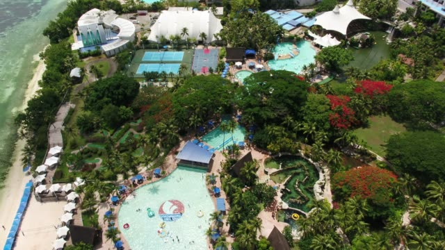 vídeos de stock, filmes e b-roll de pacific islands club in tumon bay, guam, united states - árvore tropical