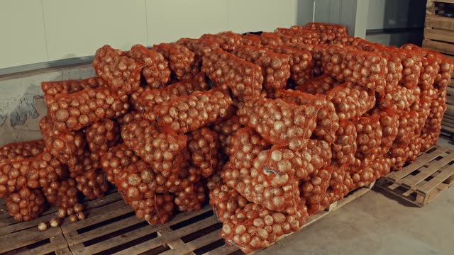 packaged onions at the distribution warehouse - refrigerator stock videos & royalty-free footage