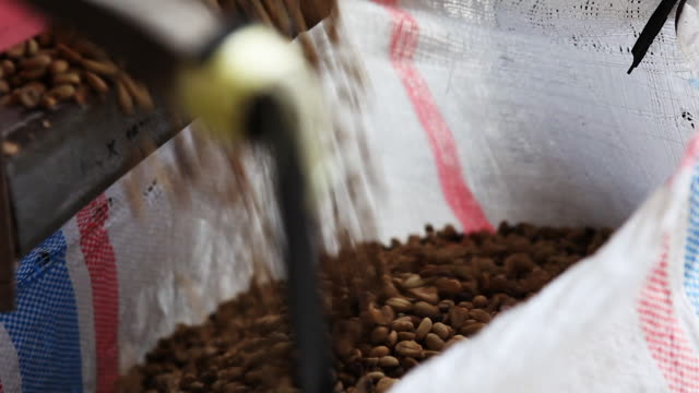 packaging fresh coffee beans in burlap sack - 麻袋点の映像素材/bロール