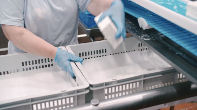 packaging line at food processing plant. packing machine at dairy factory. dairy products at conveyor belt. automated production line - dairy factory stock videos & royalty-free footage