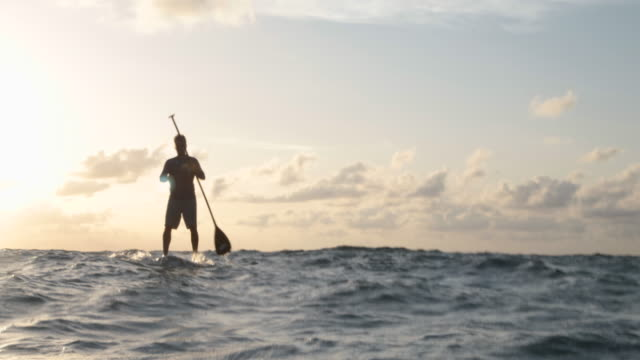WA Paddle boarder on ocean at sunrise
