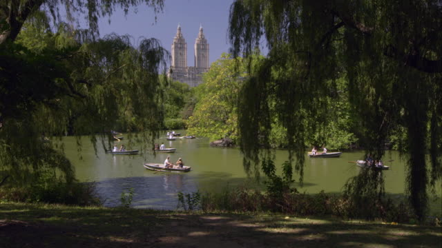 paddle boats in the lake in central park - remo stock videos and b-roll footage
