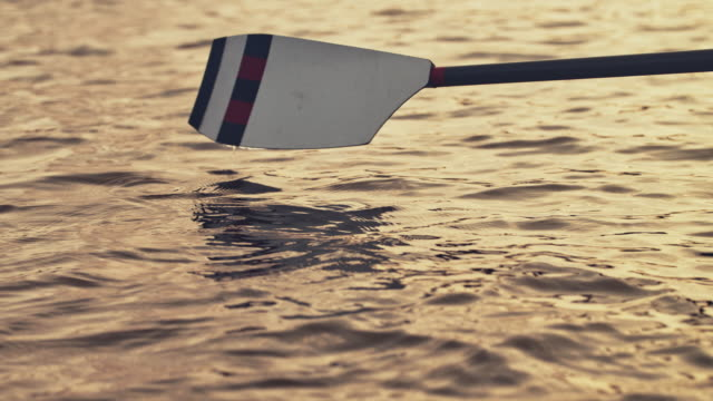paddle in river during sunset - pagaiare video stock e b–roll