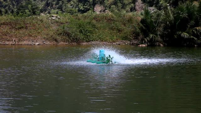 Paddle wheeler aerators