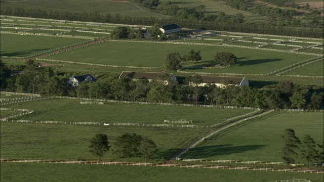 aerial paddocks of stud farm, franschhoek, western cape, south africa - pferdestall stock-videos und b-roll-filmmaterial