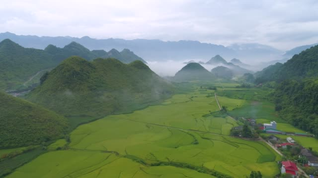 paddy fields located in tam son town, quan ba district, ha giang province, vietnam. - 地理的地域 国点の映像素材/bロール