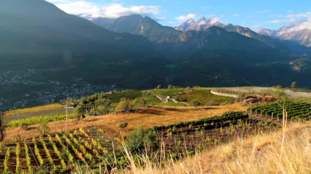 paesaggio di vigneti in valle d'aosta - carrellata stock videos & royalty-free footage