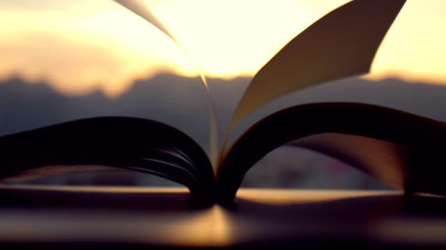 vidéos et rushes de pages renversées par le vent au coucher du soleil - courbe