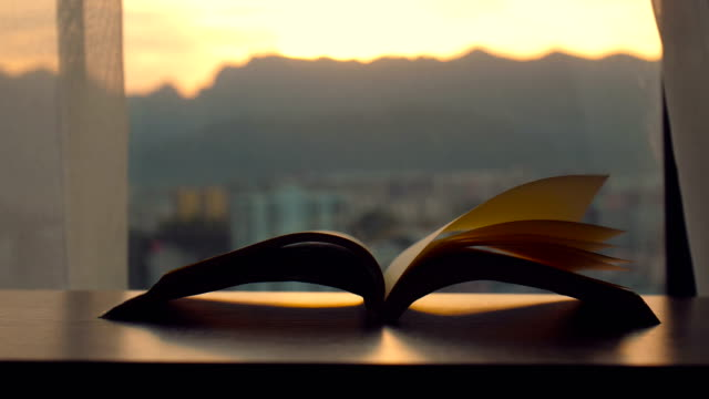 pages flipped by the wind at sunset - literature stock videos & royalty-free footage