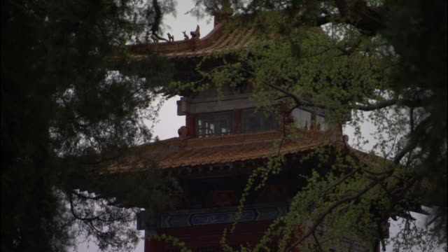 ms pagoda at fawang shaolin temple surrounded by trees/ henan province, china - ca. 7 jahrhundert stock-videos und b-roll-filmmaterial