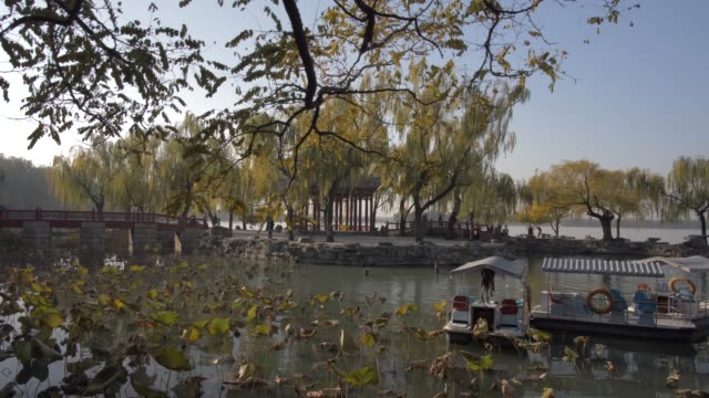 pagoda near wenchangge and kunming lake, the summer palace, unesco world heritage site, beijing, people's republic of china, asia - summer palace beijing stock videos & royalty-free footage