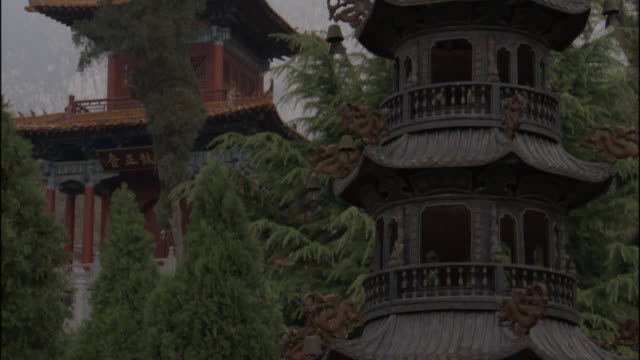 ws pagoda sculpture and trees at fawang shaolin temple/ henan province, china - ca. 7 jahrhundert stock-videos und b-roll-filmmaterial