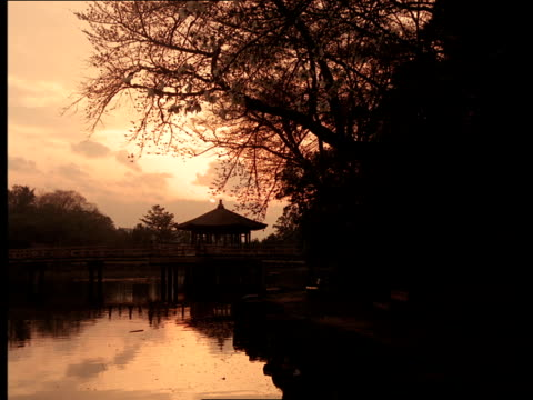 a pagoda-like gazebo graces the dock on a lake during golden hour in japan. - golden hour stock videos & royalty-free footage