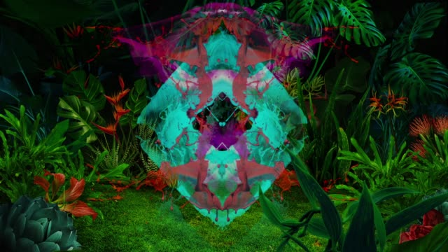 paint color splashes in night jungle - botany stock videos & royalty-free footage