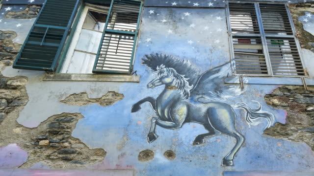 painted doors in santa maria street, funchal, madeira island, portugal, europe - 不完全な美しさ点の映像素材/bロール