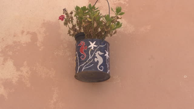 painted flower pot - sassari stock videos & royalty-free footage