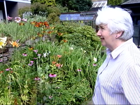 elizabeth blackadder made dame of british empire dame elizabeth blackadder interviewed sot talks about tulip season - temperate flower stock videos and b-roll footage