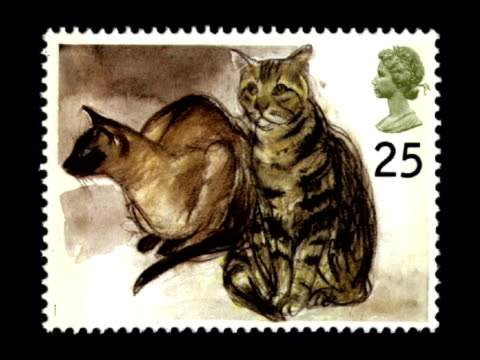 Elizabeth Blackadder made Dame of British Empire MUSIC OVERLAY Piano Music Cat paintings for Royal Mail stamp designs John Huston along in garden as...