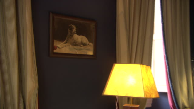 a painting of a dog decorates an upscale hotel room. - paintings stock videos and b-roll footage