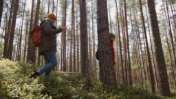 Pair of Aged Hikers Walking in Forest