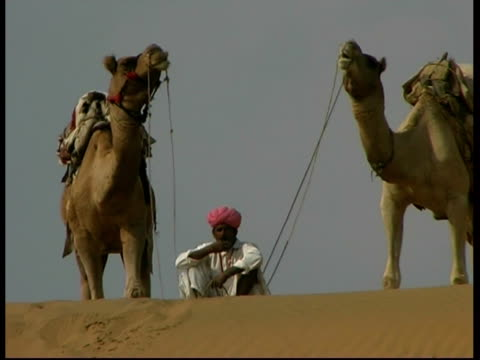 stockvideo's en b-roll-footage met ms pair of camels and men on a sand dune, rajasthan, india - hoofdtooi