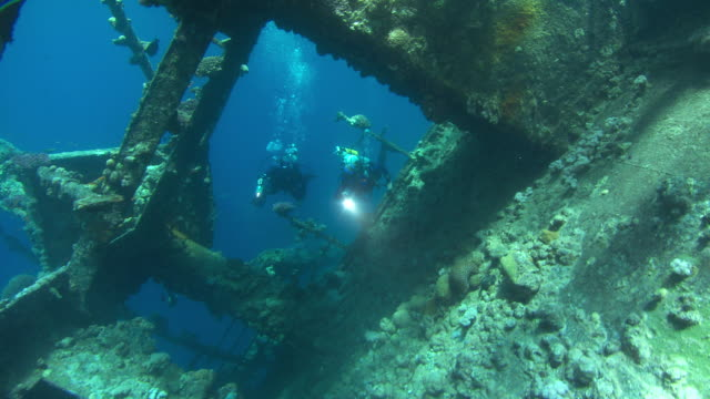 stockvideo's en b-roll-footage met a pair of divers swim through the umbria shipwreck. available in hd. - scheepswrak