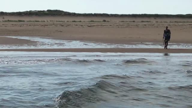 pair of fishermen rescued a woman from a massachusetts beach on july 29, after she kept an aggressive coyote at bay with a stick for about 10... - https stock videos & royalty-free footage