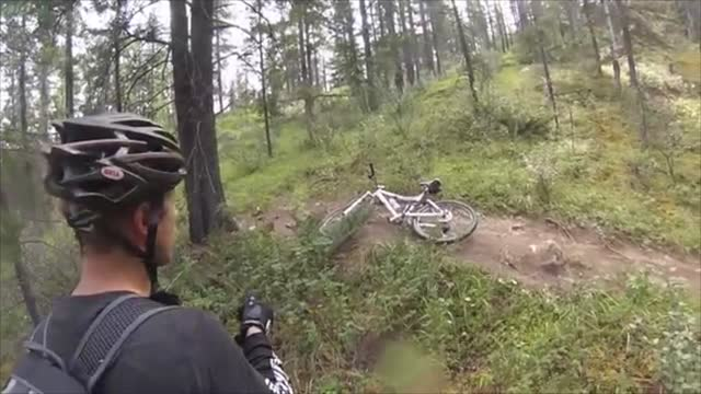 pair of mountain bikers from alberta, canada had a frightening encounter when a grizzly bear bluff charged them while riding the trails of jasper... - jasper national park stock videos & royalty-free footage