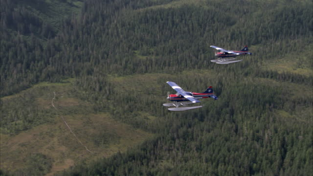 a pair of seaplanes flies over a dense forest. - 水上飛行機点の映像素材/bロール