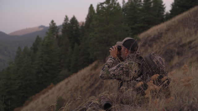 a pair of serious hunters are stalking their hunt through the woods - camouflage stock videos & royalty-free footage