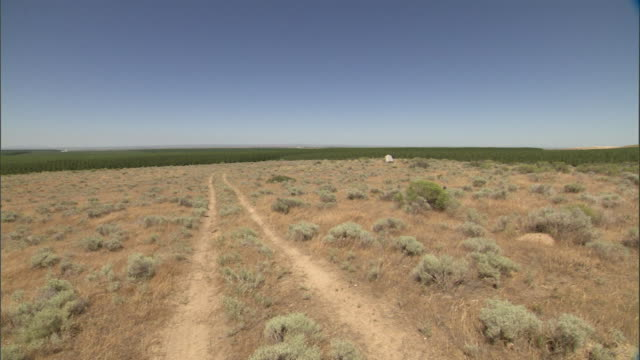 a pair of vehicle tracks run through a field. - shrubland stock videos & royalty-free footage