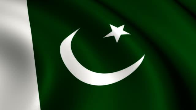 pakistan flag loopable - pakistani flag stock videos & royalty-free footage