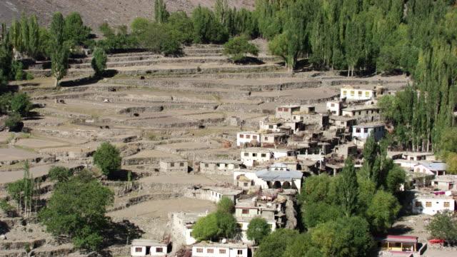 Pakistan: Pakistani farmers plowing, zoom in