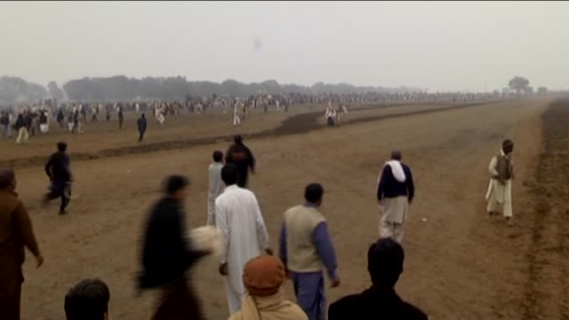 pakistani farmers guide their bulls as they compete in a traditional bull race in fateh jang town, 40 kilometers from islamabad, pakistan on january... - all around competition stock videos & royalty-free footage