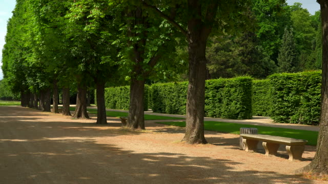 stockvideo's en b-roll-footage met palace gardens of pillnitz castle, dresden, saxony, germany - tuinpad