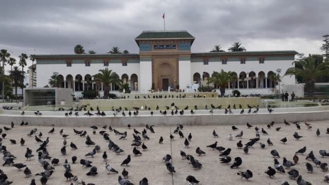 palace of justice on mohammed v square in casablanca - ruler stock videos & royalty-free footage