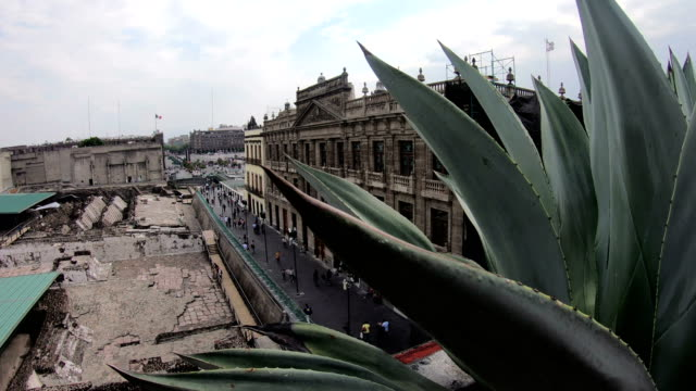 palacio nacional at zocalo square, mexico city - aztec stock videos & royalty-free footage