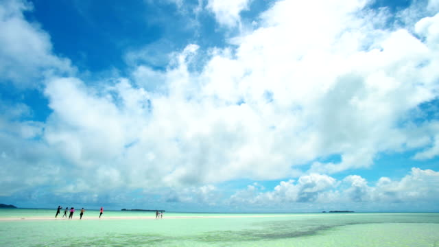 palau beautiful beach under bluesky in a sunny day - micronesia stock videos & royalty-free footage
