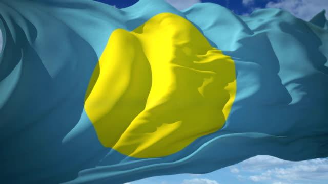 vídeos y material grabado en eventos de stock de bandera de palaos - onda irregular