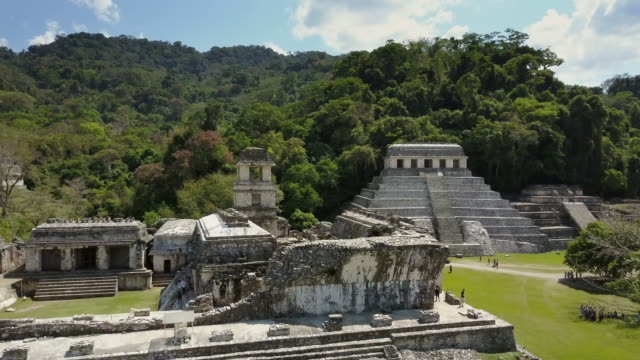 palenque chiapas mexico - pyramid stock videos and b-roll footage