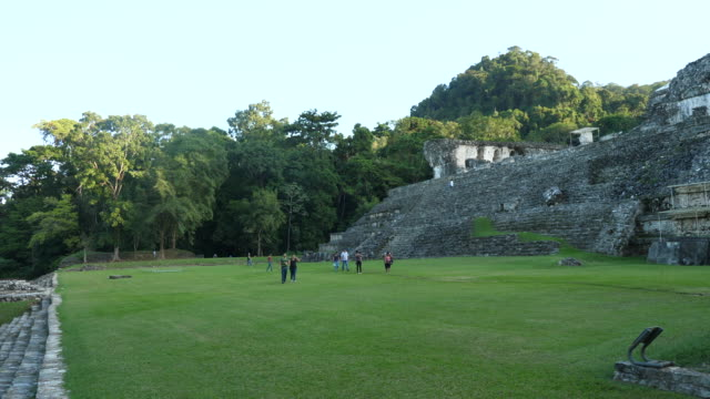 vídeos de stock e filmes b-roll de palenque, general view of the site. - palenque