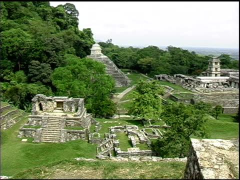 palenque ruinen der maya, mexiko - chiapas stock-videos und b-roll-filmmaterial