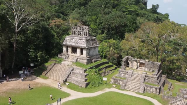 palenque mexico pyramids and palace. - palenque stock-videos und b-roll-filmmaterial