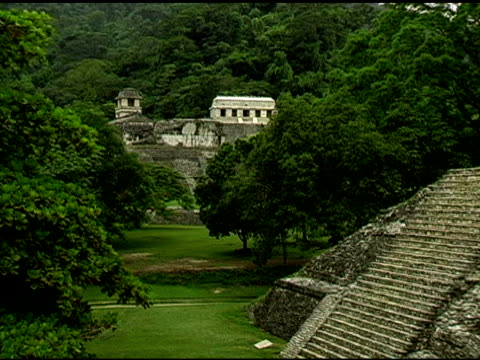 palenque palace maya-ruinen in yucatan, mexiko 2 website - palenque stock-videos und b-roll-filmmaterial