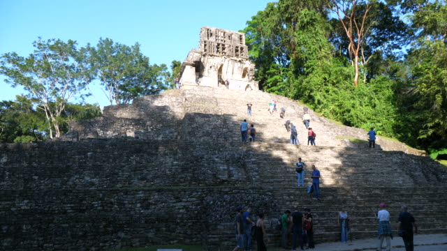 vídeos de stock e filmes b-roll de palenque, tourists climbing the steps of the temple of the sun. - palenque