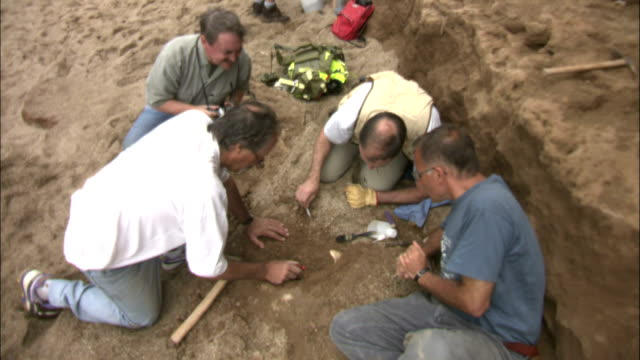 paleontologists carefully extract dinosaur bones from a cliff-side dig. - archaeology stock videos & royalty-free footage