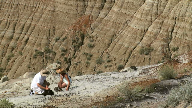 stockvideo's en b-roll-footage met hd: paleontologists - fysische geografie