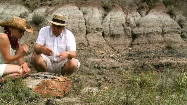 hd: paleontologists - geologist stock videos & royalty-free footage