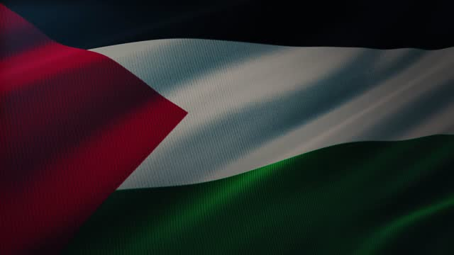 4k palestina flag waving in the wind with highly detailed fabric texture - palestina stock videos & royalty-free footage